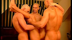 Ripped guy gets his ass rammed by three massive rods of pleasure