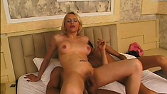 Tranny amateurs Letitia and Alexis get their asses plowed by a huge cock