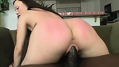 White chick gets excited and gobbles down a hard black piston