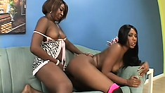 Insatiable ebony lesbians fuck each other with a massive dildo