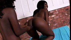 Two sexy black lesbians share a big dildo and enjoy intense pleasure