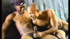 Passionate guy in black cap gives a taste of his cock to luscious boy