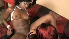 Two voluptuous black lesbians fuck each other's twats with a huge dildo