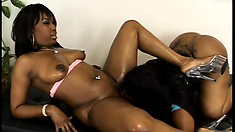 These sexy black babes eat each other before getting out the toys