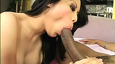 Sasha Hollander, a busty Asian babe with a superb ass, is a sucker for black cock