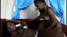 A pair of hot starlets Kelly and Megan have a great time fucking