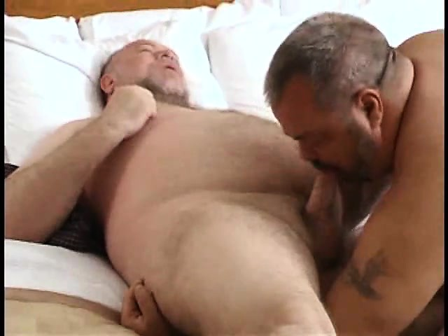 Bears gay sucking cock photo