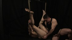 With her body tied up and suspended, a sultry girl gets drilled rough