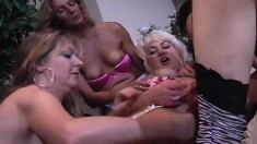 Mature lesbian babes hook up for clit licking and cunt toying