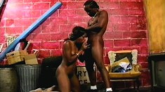 Vivacious Ebony Girl Has A Black Stud Licking And Pounding Her Holes